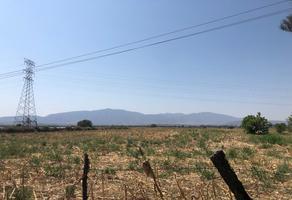 Foto de terreno habitacional en venta en carretera chapala-la capilla , los cedros, ixtlahuacán de los membrillos, jalisco, 14163729 No. 01