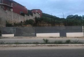 Foto de terreno comercial en venta en carretera chicoasen , plan de ayala, tuxtla gutiérrez, chiapas, 17520231 No. 01