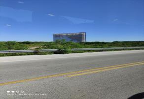 Foto de terreno habitacional en venta en carretera chicxulub puerto , chicxulub, chicxulub pueblo, yucatán, 0 No. 01