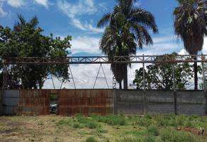 Foto de terreno comercial en venta en carretera cln- navolato , san pedro, navolato, sinaloa, 12190091 No. 01