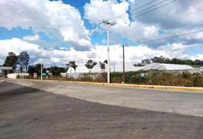Foto de terreno comercial en venta en carretera coatlinchán , san miguel coatlinchán, texcoco, méxico, 18734545 No. 01