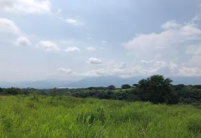 Foto de terreno habitacional en venta en carretera comala suchitlan , comala, comala, colima, 16941648 No. 01