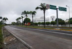 Foto de terreno habitacional en venta en carretera córdoba - potrero s/n , paraje nuevo centro, amatlán de los reyes, veracruz de ignacio de la llave, 0 No. 01