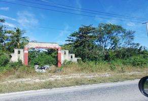 Foto de terreno habitacional en venta en carretera costera del golfo 601, leona vicario, q.r. , la amistad, benito juárez, quintana roo, 18844560 No. 01