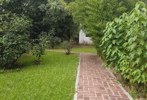 Foto de terreno habitacional en venta en carretera cristobal colón , san pablo etla, san pablo etla, oaxaca, 14264610 No. 01