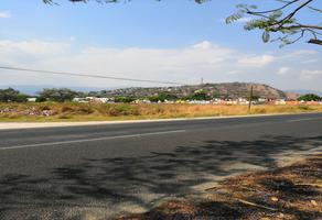 Foto de terreno industrial en venta en carretera cuatla cuernavaca , san juan, yautepec, morelos, 7081070 No. 01