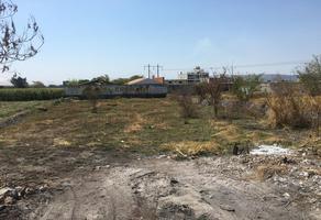 Foto de terreno industrial en venta en carretera cuautla ex-hacienda el hospital , 10 de abril, cuautla, morelos, 6759983 No. 01