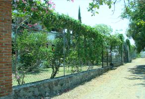 Foto de terreno comercial en venta en carretera cuernavaca - grutas , alpuyeca, xochitepec, morelos, 18371407 No. 01