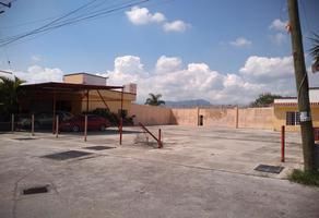 Foto de terreno comercial en venta en carretera cuernavaca-cuautla kilometro 35, viveros de cocoyoc, yautepec, morelos, 8849764 No. 01