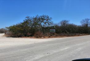Foto de terreno industrial en venta en carretera dzitya a cheuman , dzitya, mérida, yucatán, 0 No. 01