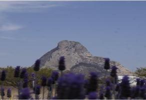 Foto de terreno habitacional en venta en carretera el colorado-toliman en el kilometro 35+500 de bernal , bernal, ezequiel montes, querétaro, 17717651 No. 01