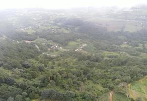 Foto de terreno habitacional en venta en carretera el mirador-zacapoaxtla , huaxtla, tlatlauquitepec, puebla, 0 No. 01