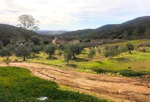 Foto de terreno habitacional en venta en carretera ensenada-tecate , san antonio de las minas, ensenada, baja california, 12017082 No. 01