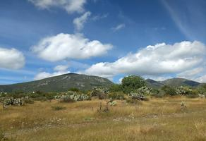 Foto de terreno habitacional en venta en carretera estatal 100 , bernal, ezequiel montes, querétaro, 16793823 No. 01