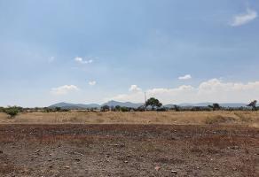 Foto de terreno habitacional en venta en carretera estatal numero 411 30, las taponas, huimilpan, querétaro, 3589018 No. 01