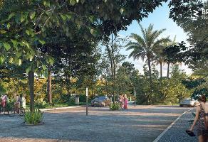 Foto de terreno comercial en venta en carretera estatal tulum-cobá , tulum centro, tulum, quintana roo, 14327989 No. 01