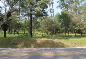 Foto de terreno habitacional en venta en carretera fed kilometro 58, 800 0, 3 marías o 3 cumbres, huitzilac, morelos, 17077779 No. 01