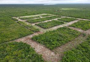 Foto de terreno habitacional en venta en carretera federal 176, chicxulub, chicxulub pueblo, yucatán, 0 No. 01