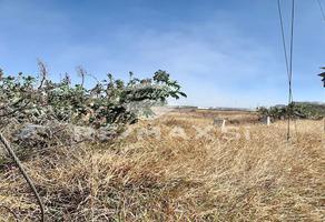 Foto de terreno industrial en renta en carretera federal 57, kilometro 200 , el carmen, el marqués, querétaro, 6523761 No. 01