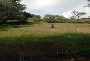 Foto de terreno comercial en venta en carretera federal a cuernavaca , san miguel xicalco, tlalpan, df / cdmx, 13944462 No. 01