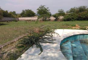 Foto de terreno habitacional en venta en carretera federal alpuyeca sin numero, alpuyeca, xochitepec, morelos, 0 No. 01