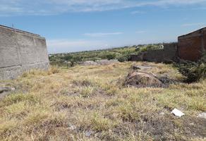 Foto de terreno comercial en venta en carretera federal , alpuyeca, xochitepec, morelos, 0 No. 01