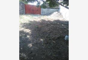 Foto de terreno habitacional en venta en carretera federal alpuyeca-cacahuamilpa sin número, alpuyeca, xochitepec, morelos, 0 No. 01