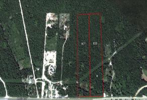 Foto de terreno industrial en venta en carretera federal chetumal-cancún 359, playa del carmen, solidaridad, quintana roo, 6576555 No. 01