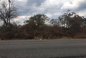Foto de terreno habitacional en venta en carretera federal cuernavaca tepoztlán 0, santa catarina, tepoztlán, morelos, 0 No. 01