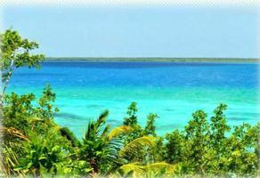 Foto de terreno habitacional en venta en carretera federal de chetumal a cancun , buenavista, bacalar, quintana roo, 0 No. 01