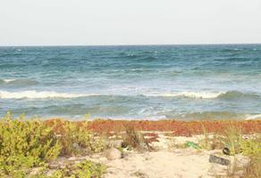 Foto de terreno habitacional en venta en camino costero mahahual-xcalac , mahahual, othón p. blanco, quintana roo, 20486827 No. 01