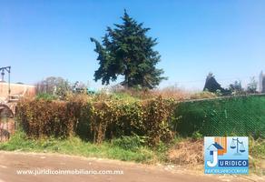 Foto de terreno comercial en venta en carretera federal méxico cuautla , casco de san juan, chalco, méxico, 14373955 No. 01