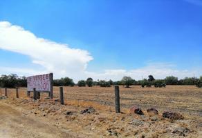 Foto de terreno habitacional en venta en carretera federal méxico tuxpan , santa maría coatlán, teotihuacán, méxico, 0 No. 01