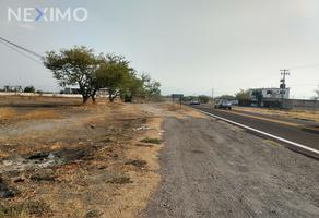 Foto de terreno industrial en venta en carretera federal méxico-acapulco , ahuehuetzingo, puente de ixtla, morelos, 15146464 No. 01