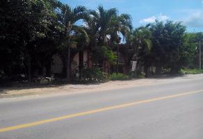 Foto de local en venta en carretera federal sin numero , nuevo chapingo 1a sección, san pedro pochutla, oaxaca, 4032774 No. 01