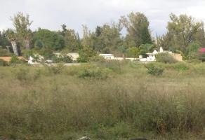 Foto de terreno habitacional en venta en carretera gdl - chapala lote 17 terreno 10 , ixtlahuacan de los membrillos, ixtlahuac?n de los membrillos, jalisco, 6352532 No. 02