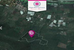 Foto de terreno habitacional en venta en carretera guadalajara - morelia , jocotepec centro, jocotepec, jalisco, 14250886 No. 01