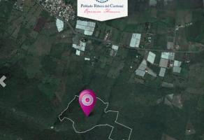 Foto de terreno habitacional en venta en carretera guadalajara - morelia , jocotepec centro, jocotepec, jalisco, 14394829 No. 01
