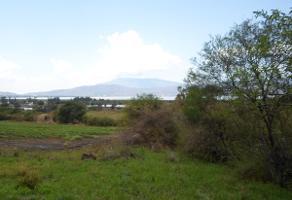 Foto de terreno habitacional en venta en carretera guadalajara morelia , san pedro tesistán, jocotepec, jalisco, 5213179 No. 01