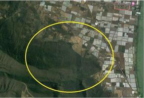Foto de terreno habitacional en venta en carretera guadalajara-morelia , jocotepec centro, jocotepec, jalisco, 0 No. 01