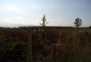 Foto de terreno habitacional en venta en carretera int. 0, xoxocotlan, santa cruz xoxocotlán, oaxaca, 8826890 No. 01