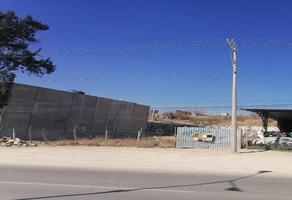 Foto de terreno habitacional en venta en carretera internacional 190 , santo domingo barrio bajo, villa de etla, oaxaca, 0 No. 01