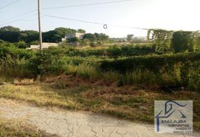 Foto de terreno habitacional en venta en carretera internacional tuxtla-chiapa de corzo , chiapa de corzo (ángel albino corzo), chiapa de corzo, chiapas, 5597727 No. 01