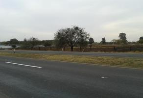 Foto de terreno comercial en venta en carretera irapuato - abasolo 18, irapuato, irapuato, guanajuato, 4391471 No. 01