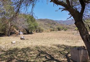 Foto de terreno habitacional en venta en carretera jocotepec- chapala 961, la floresta, chapala, jalisco, 15462930 No. 01