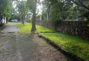 Foto de terreno habitacional en venta en carretera jojutla xoxocotla , xoxocotla, puente de ixtla, morelos, 0 No. 01