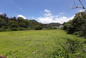 Foto de terreno habitacional en venta en carretera joquicingo malinalco , malinalco, malinalco, méxico, 19004600 No. 01