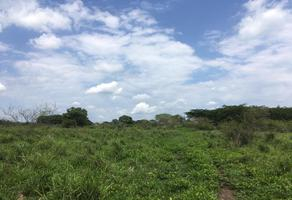 Foto de terreno habitacional en venta en carretera kilometro 6.2 localidad chiapa s/n , cuauhtémoc, colima, colima, 15739143 No. 01
