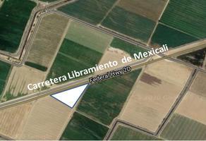 Foto de terreno habitacional en venta en carretera libramiento tijuana san luis , puebla, mexicali, baja california, 13021873 No. 01