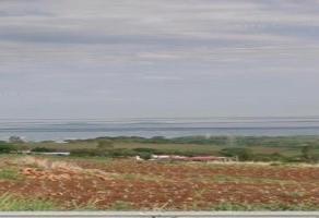 Foto de terreno habitacional en venta en carretera libre a guzman , acatlan de juárez, acatlán de juárez, jalisco, 7079735 No. 01